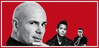 Pitbull-R_205X100.jpg